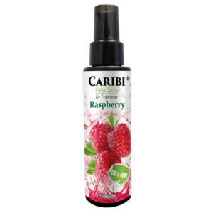 ODORIZANT SPRAY CARIBI ZMEURA 100ML